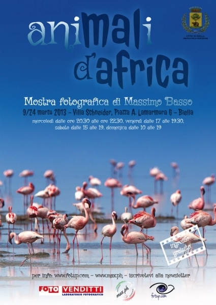 mostra animali d'africa