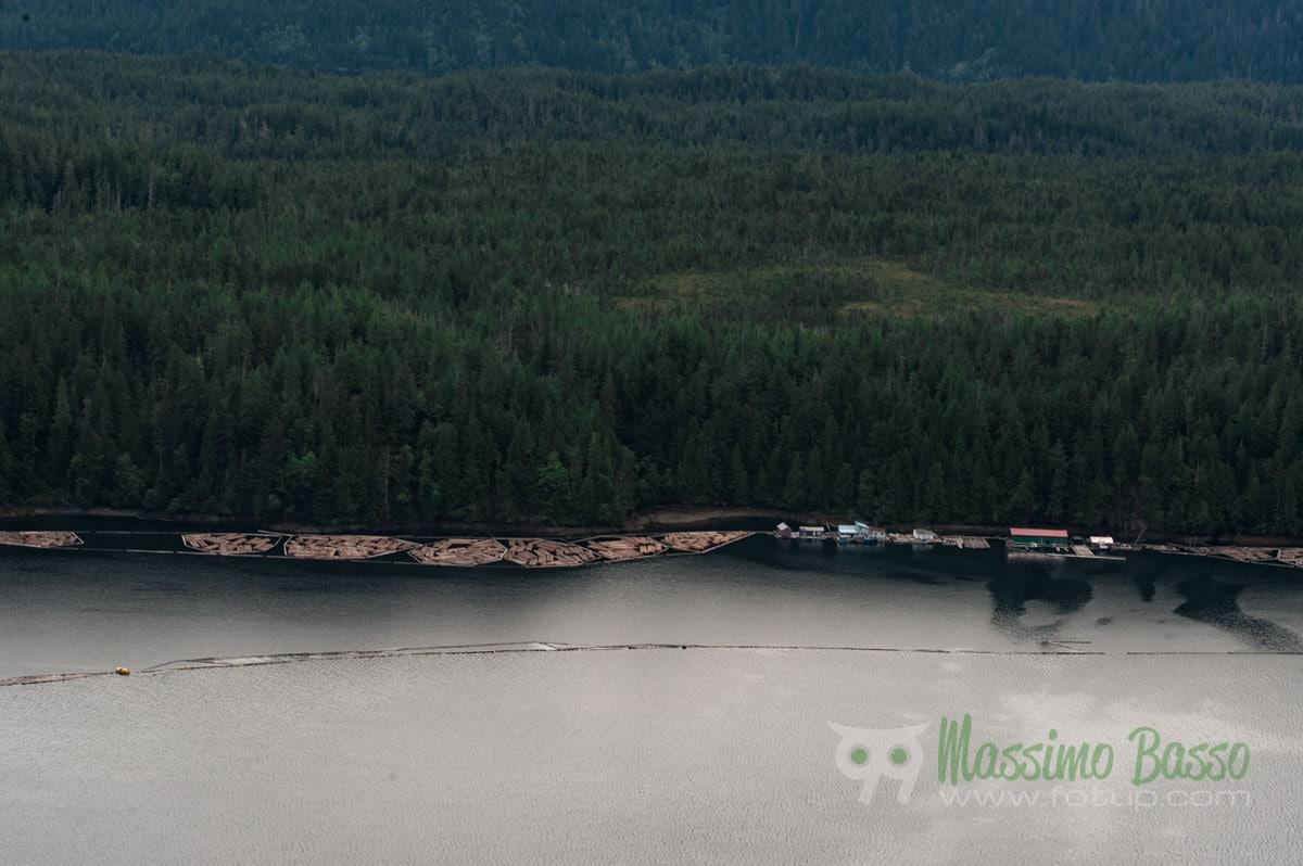 Il trasporto del legname via fiume ha storie antiche. Fin dal 1930 nella costa ovest l'industria del legname è stata una delle risorse trainanti del paese.