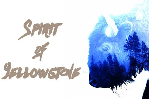Spirit of Yellowstone: la natura in immagini