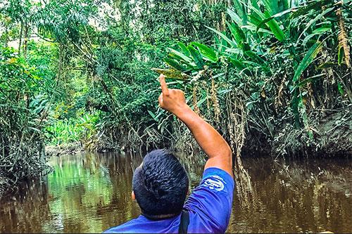 In canoa nella foresta amazzonica in Ecuador