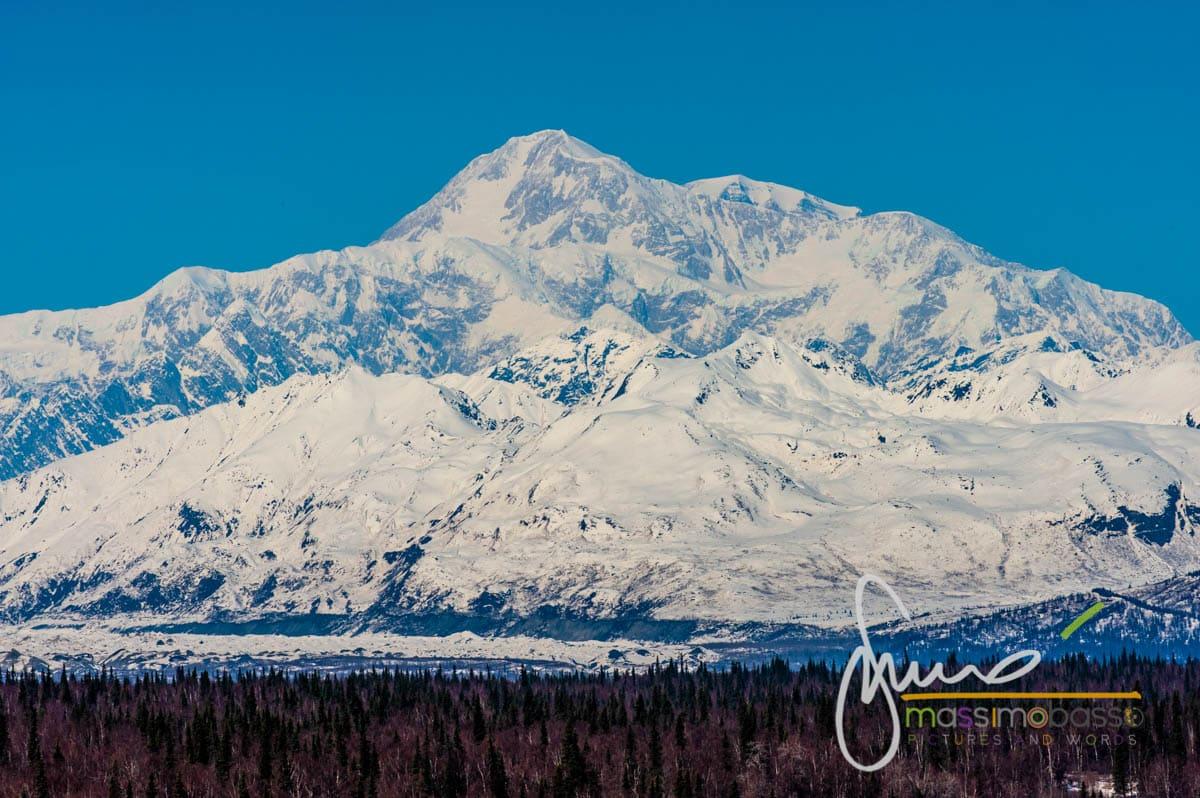 Immagini dall'articolo Alaska in primavera un itinerario di viaggio insolito