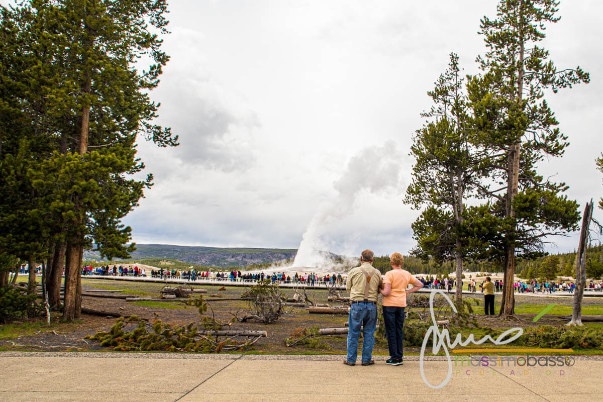 La zone dell'Old Faithful all'interno del parco