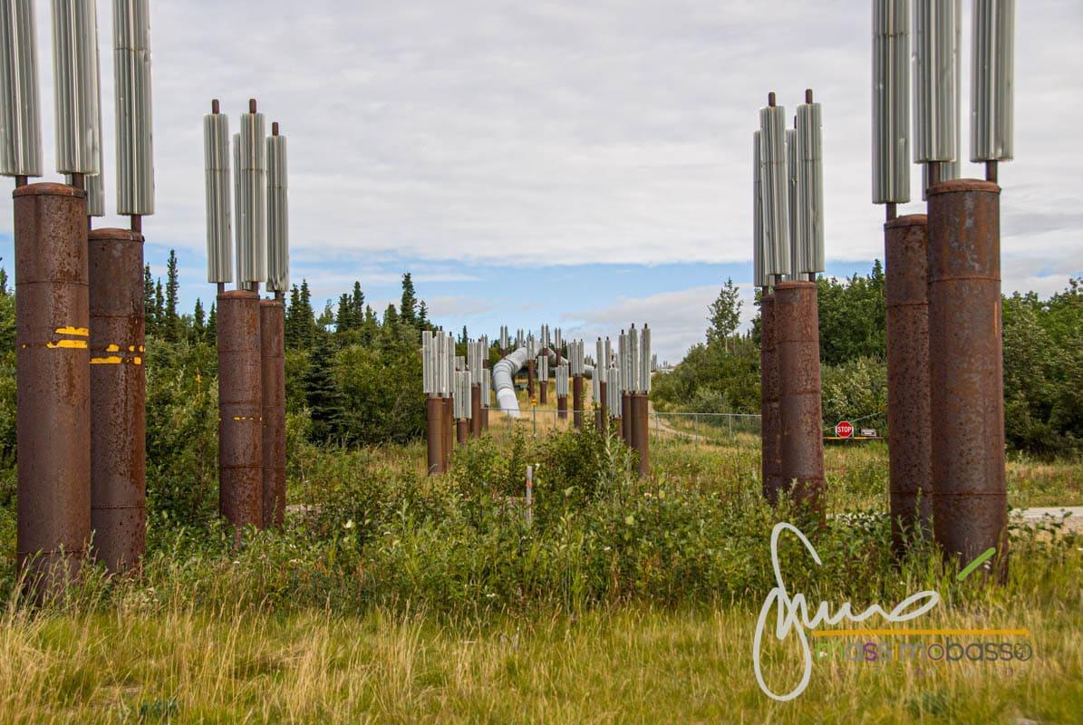 La Trans Alaska Pipeline sulla Richardson