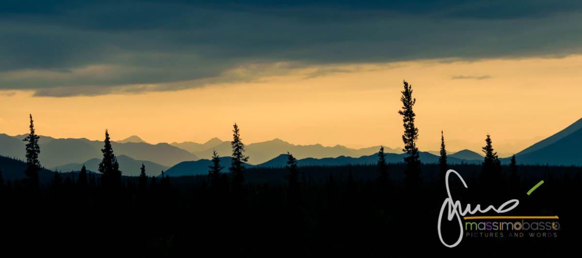 Distesa di Abeti visibile un panorama comune sulle strade dell'Alaska