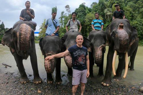 Bagno con gli elefanti di Tangkahan